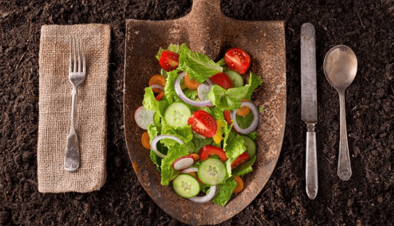 8 Vegetarian Dishes Straight From The Garden