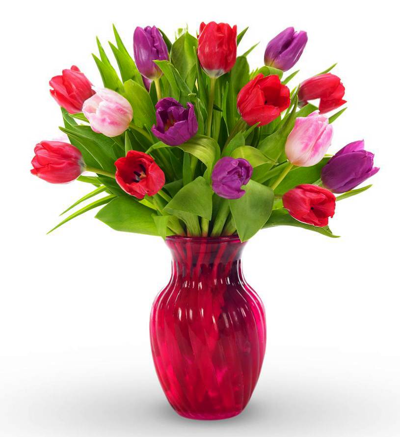 Avas Flowers Tulip Coupon Codes