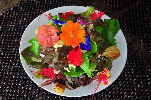 Colorful Flower Salad