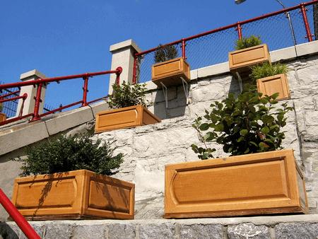 Container Garden3