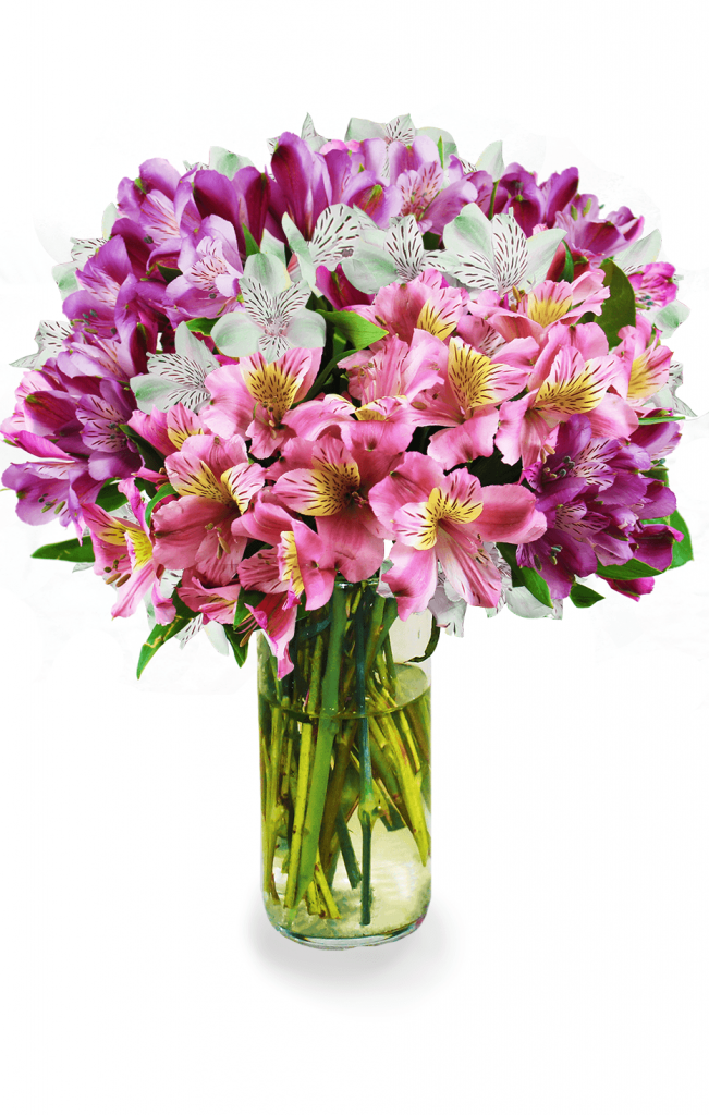 Avas Flowers Coupon Code