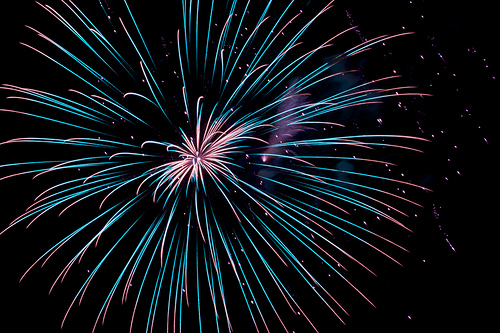 Fireworks and Flowers: Happy Independence Day!