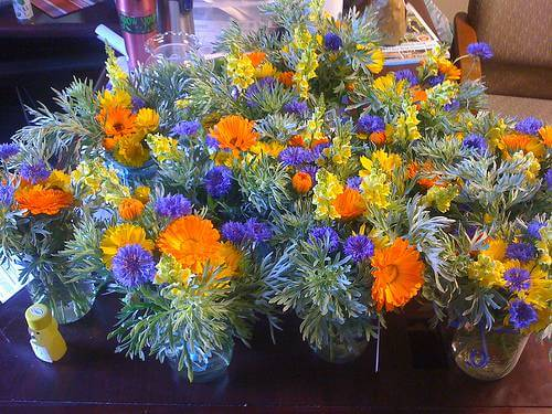 The Month of the Marigold: The October Birth Flower