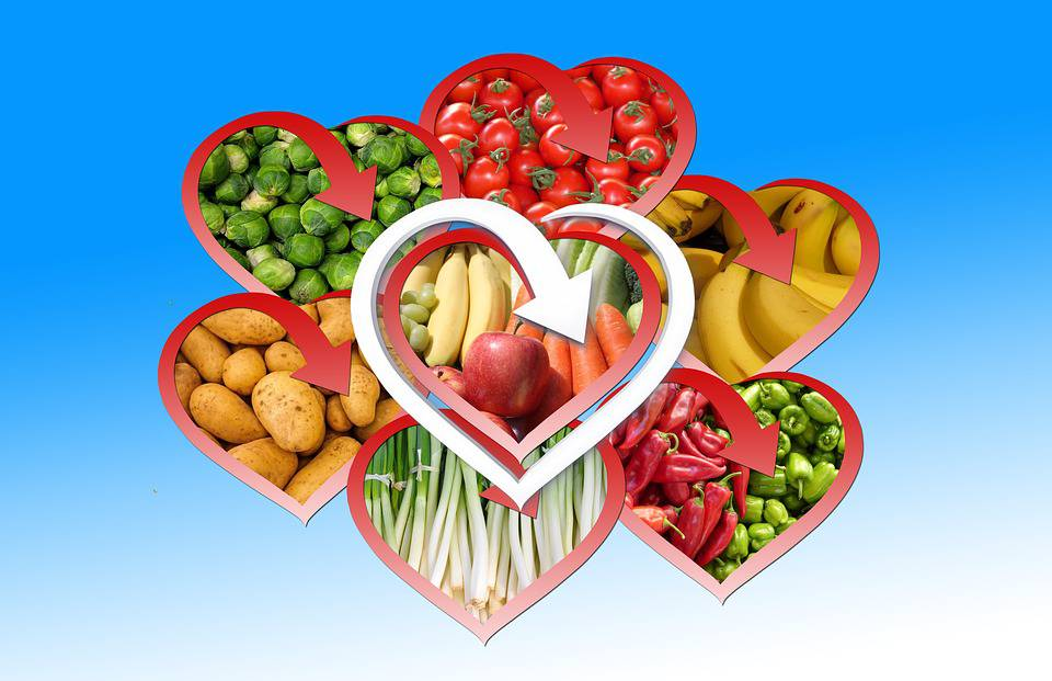 The Beneficial Effects Of Fruits And Vegetables On The Human Body