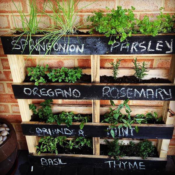The Guide To Gardening In Small Spaces