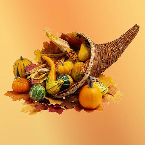 The History Behind The Thanksgiving Cornucopia