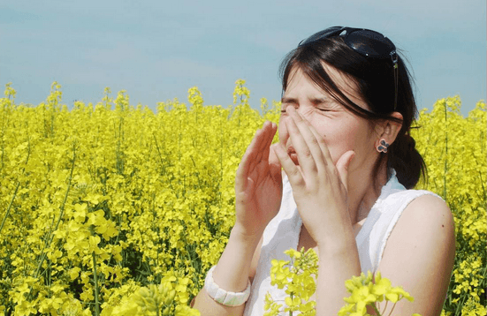 These Allergy-Friendly Flowers Are Nothing To Sneeze At