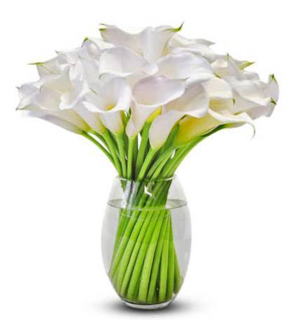 Calla Lilly Flower Bouquet