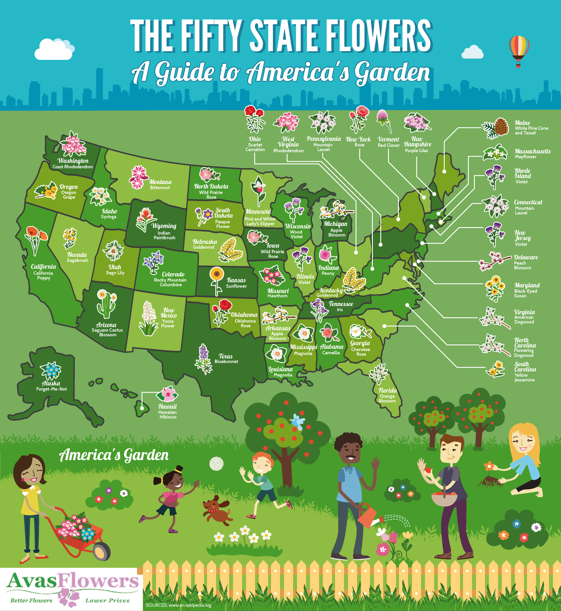 The Fifty State Flowers - Avasflowers.net - Infographic