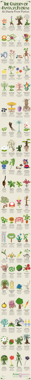 Infographic - Garden of Fantasy Flora