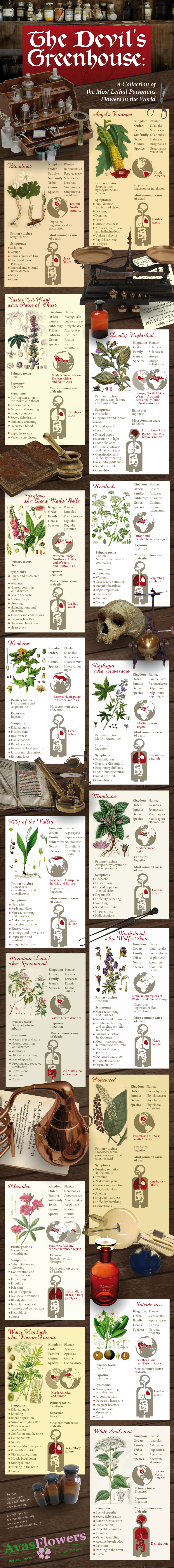 The Devil's Greenhouse - Avasflowers.net - Infographic