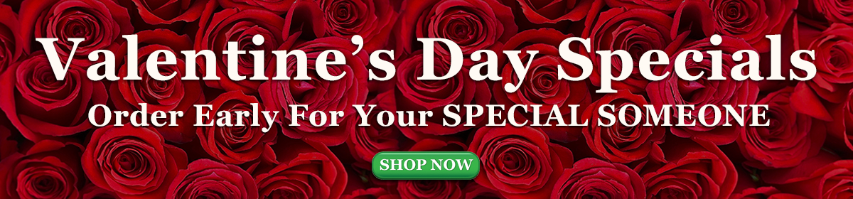 Valentines Day - 21