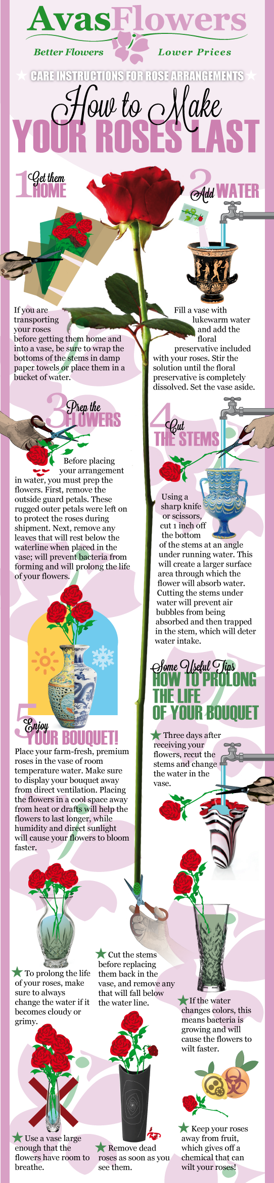 Infographic - How To Make Your Roses Last