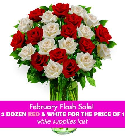 24 Red & White Roses - Farm Fresh