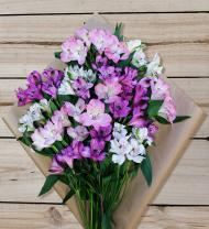 Colorful Alstroemeria - Farm Fresh