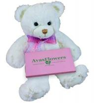 Bear with Chocolates