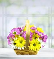 Blooming Bounty Daisy Basket