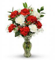 Red and White Christmas Carnations