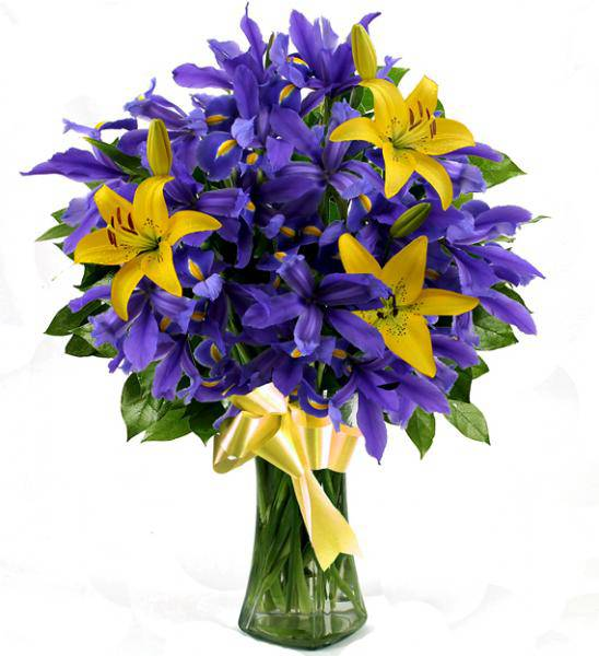 Flowers: Iris And Lilies - Premium