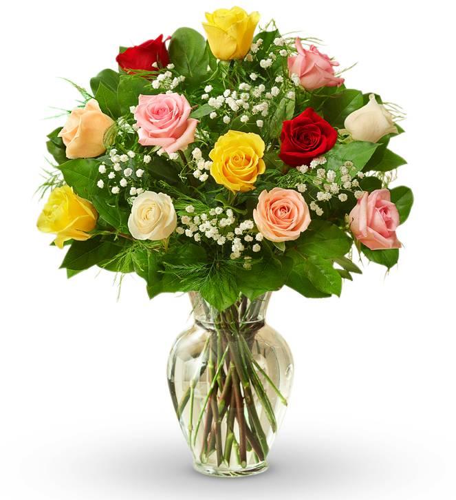 Dozen Mother's Day Roses