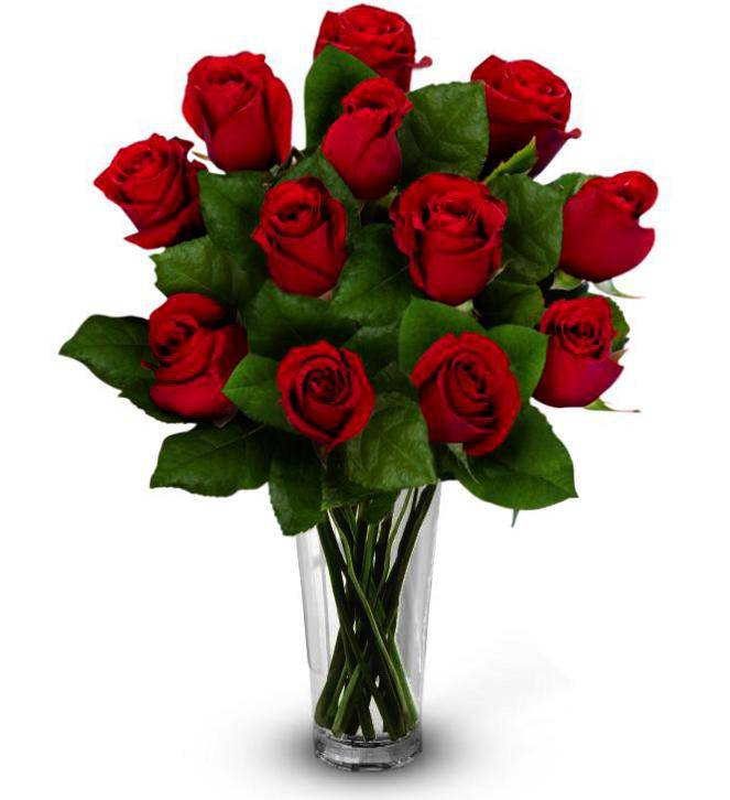 Dozen roses farm fresh avas flowers for 12 dozen roses at your door