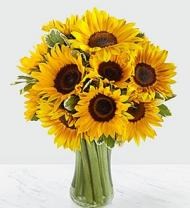 Endless Summer Sunflower Bouquet