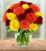 Fabulous Fall Roses