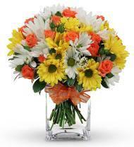 Festive Daisy Bouquet