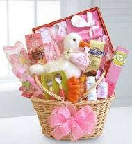 Special Stork Delivery Baby Girl Basket