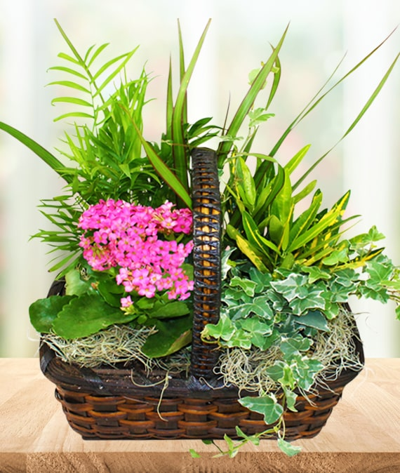 Garden Pleasures Basket
