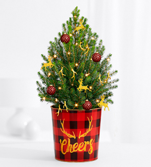 Holiday Glam Spruce Tree