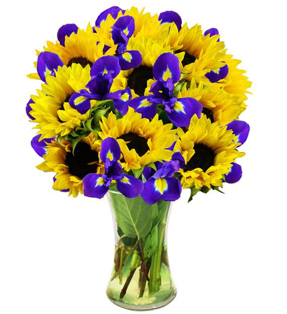 Iris and Sunflowers - Farm Fresh