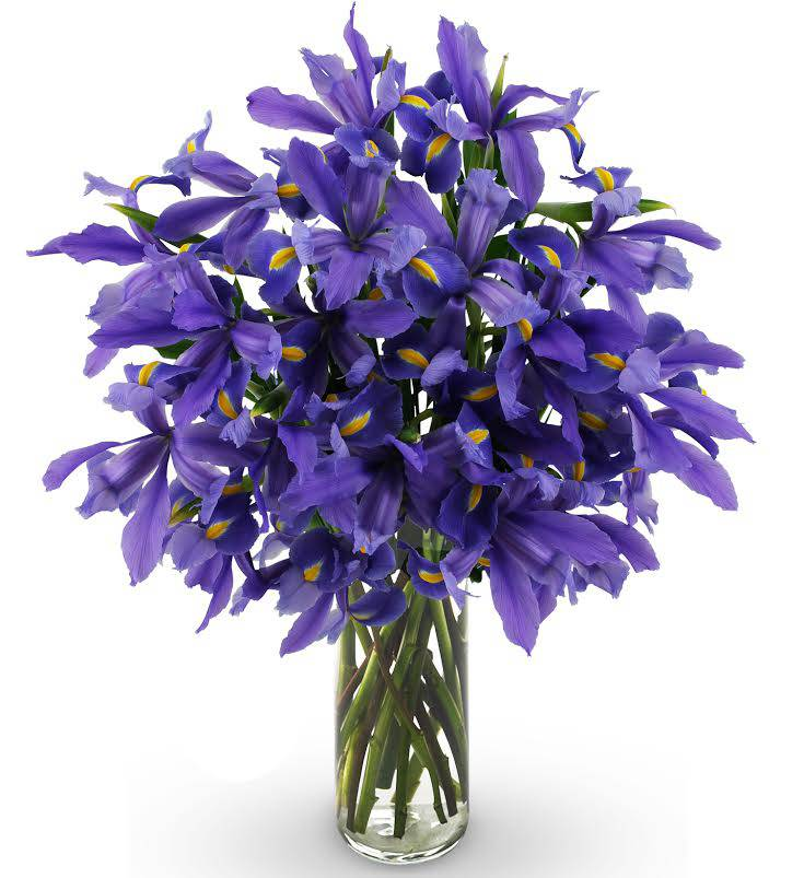 Iris Bouquet - Farm Fresh