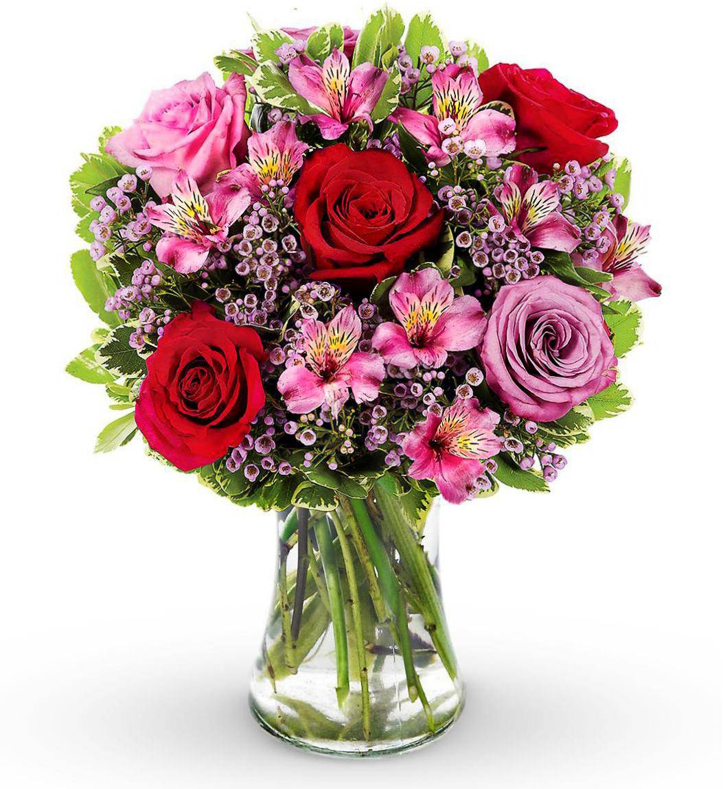 Contact Avas Flowers: Find below customer service details of Avas Flowers, US, including phone and email. Besides contact details, the page also offers a brief overview of the floral company and its services. Reach the Avas Flowers customer service below for queries, complaints or feedback.