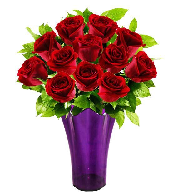 Royal Roses - Farm Fresh