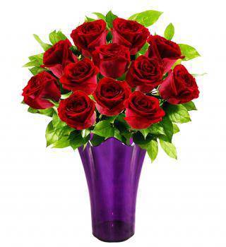 Limited Edition Red Violet Romance - Farm Fresh