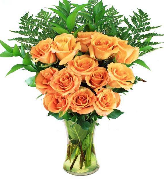 12 Orange Roses - Farm Fresh