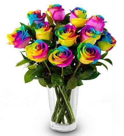 Flowers: Rainbow Roses - One Dozen - 12 Stems - Including Vase