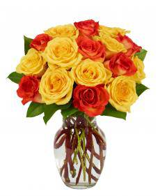 Orange and Yellow Roses-Farm Fresh