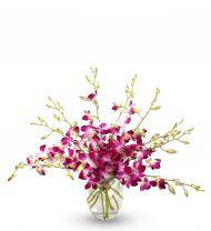 Purple Orchid Bouquet