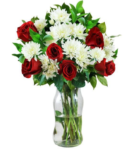 Red Rose & White Poms - Farm Fresh