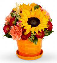 Rise and Sunshine Bouquet