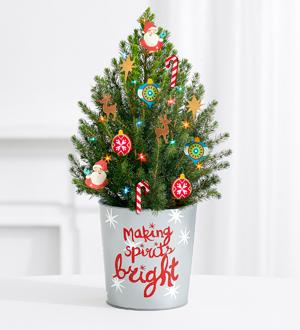 Santa's Workshop Spruce Tree