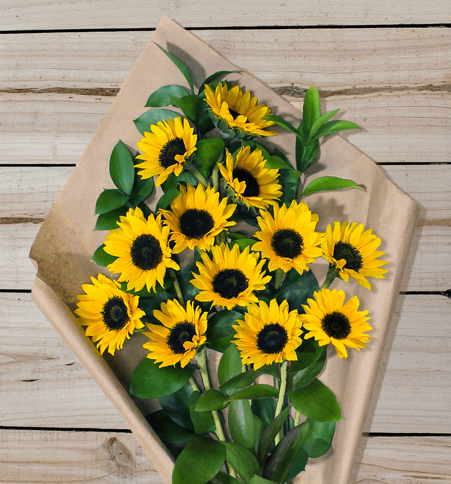Sunflowers - Farm Fresh