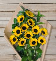 Sunflowers - Farm Fresh