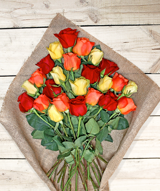 24 Colorful Roses - Farm Fresh