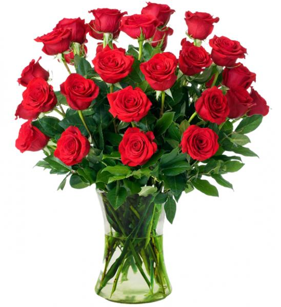 Flowers: Two Dozen Long Stem Red Roses In Vase