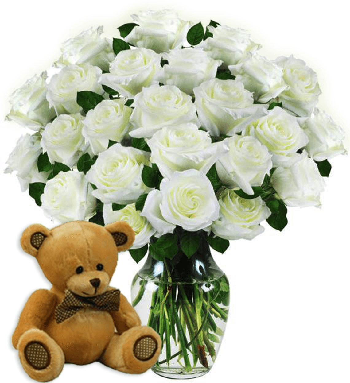 Two Dozen White Roses & Bear