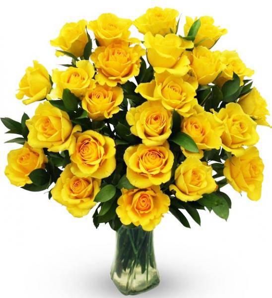 Flowers: Two Dozen Yellow Roses In Vase