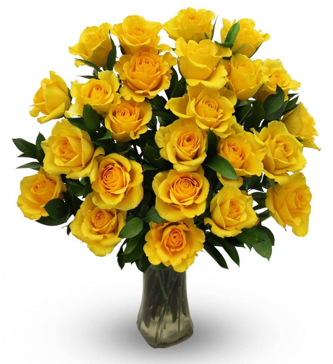 Wallpaper Of Yellow Rose: Yellow Roses Images